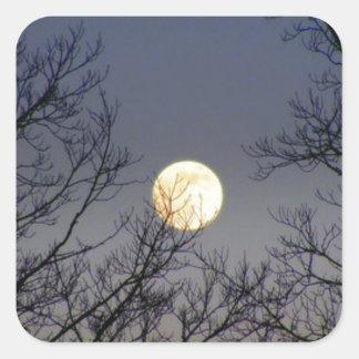 Lunar Eclipse 2008 Square Sticker