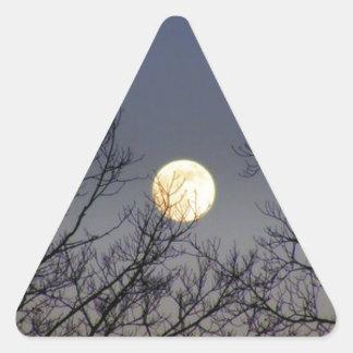 Lunar Eclipse 2008 Triangle Sticker