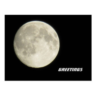 Lunar Greetings Postcard