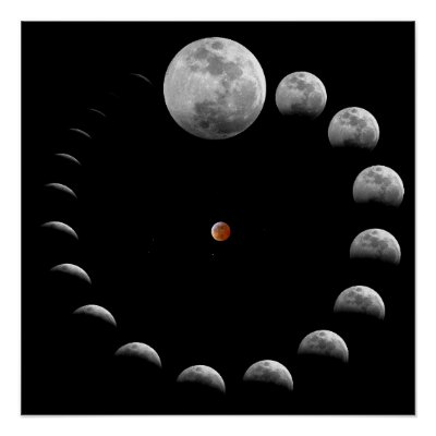 Moon Lunar Phases Poster