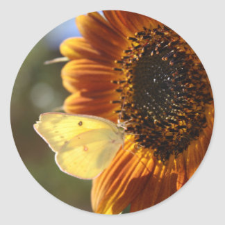 Lunar Moth Sun Landing Classic Round Sticker