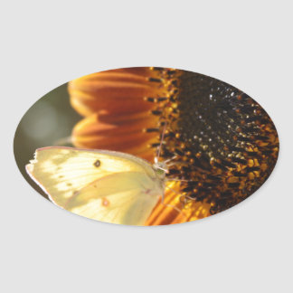 Lunar Moth Sun Landing Oval Sticker