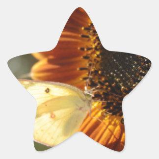 Lunar Moth Sun Landing Star Sticker