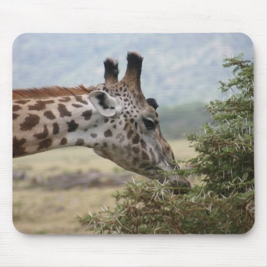 Lunch at the Acacia Tree - Mousepad
