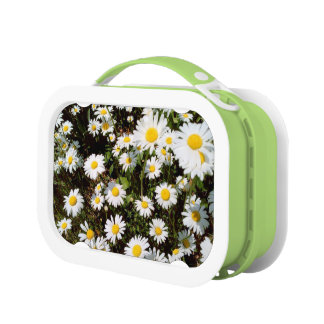 lunch box - personalized