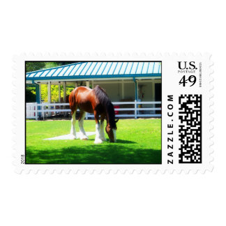 Lunch On The Lawn Postage Stamp