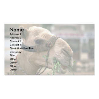Lunch time in the Sahara Double-Sided Standard Business Cards (Pack Of 100)