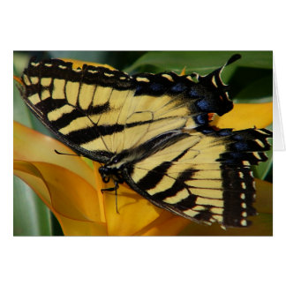 lunch with a swallowtail card