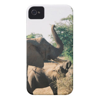 Lunchtime in Kenya Case-Mate iPhone 4 Case