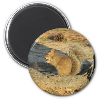 Lunchtime in the park 2 inch round magnet