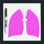 """Lung anatomy dry erase board<br><div class=""""desc"""">Picture of both lungs on dry erase board Good for describing procedures on lungs Geared towards thoracic surgeons and pulmonologists</div>"""
