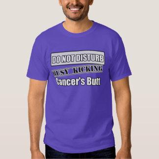 Lung Cancer Do Not Disturb Kicking Butt T Shirt