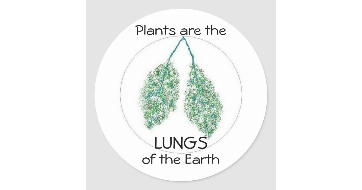 the lung of our earth Air pollution can be a serious problem especially for people living with a lung condition find out how to protect your lungs.