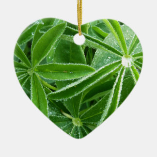 Lupin Leaves Green Nature Ceramic Ornament