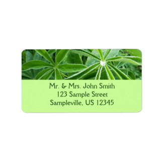 Lupin Leaves Green Nature Label