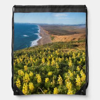 Lupine amarillo sobre la playa de Reyes del punto Mochilas