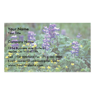 Lupine and Buttercups Business Cards