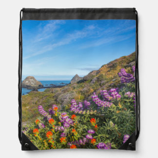 Lupine And Paintbrush Wildflowers Drawstring Bag