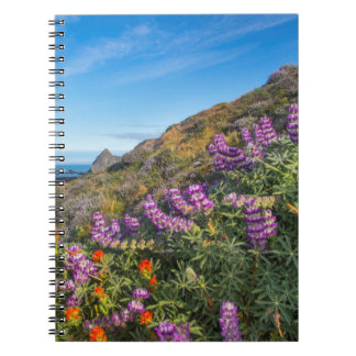 Lupine And Paintbrush Wildflowers Notebook