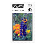 Lupine and poppies postage