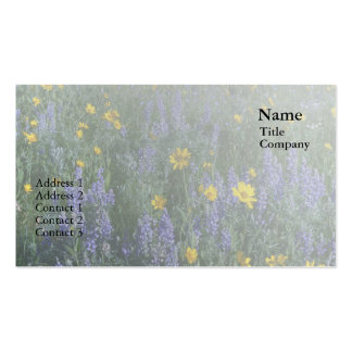 Lupine and Sunflower Business Card