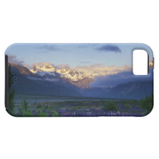 Lupine and the Main Divide, Arthur's Pass, South iPhone SE/5/5s Case