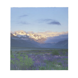 Lupine and the Main Divide, Arthur's Pass, South Notepad
