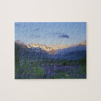 Lupine and the Main Divide, Arthur's Pass, South Jigsaw Puzzles