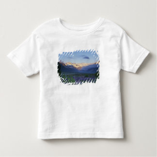 Lupine and the Main Divide, Arthur's Pass, South Toddler T-shirt