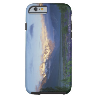 Lupine and the Main Divide, Arthur's Pass, South Tough iPhone 6 Case
