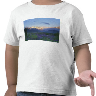 Lupine and the Main Divide, Arthur's Pass, South Tshirts