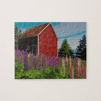 lupine de Halifax, Nueva Escocia Puzzle Con Fotos