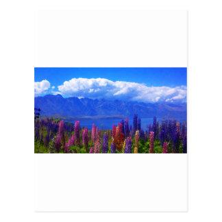 Lupine de Queenstown Nueva Zelanda sobre el lago Tarjetas Postales