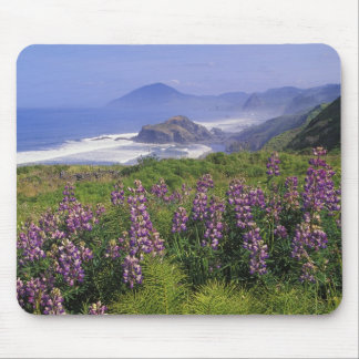 Lupine flowers and rugged coastline along mouse pad