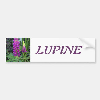 Lupine in the Perennial Garden Bumper Stickers
