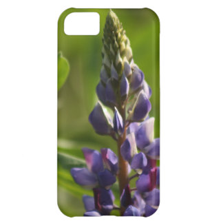 Lupine iPhone 5C Cover