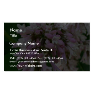 Lupine Pink Flower Business Card Template