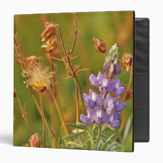 Lupine & Prairie Smoke wildflowers in Montana Binder