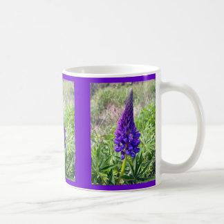 Lupine púrpura 1 taza