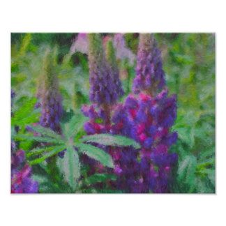 Lupine Trio Impressionist Flower Photo Painting Poster