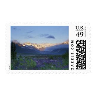 Lupine y la divisoria principal, el paso de sellos postales
