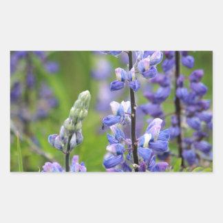 Lupines de Alaska púrpuras Rectangular Altavoz