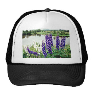 Lupines, downtown Nova Scotia, Canada  flowers Mesh Hat