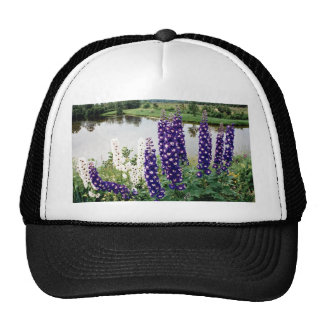 Lupines, downtown Nova Scotia, Canada Mesh Hats