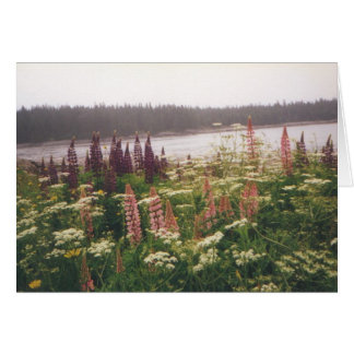 """""""Lupines, Vinalhaven, Maine"""" Card"""