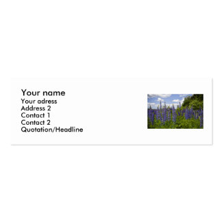 Lupins Business Card Templates