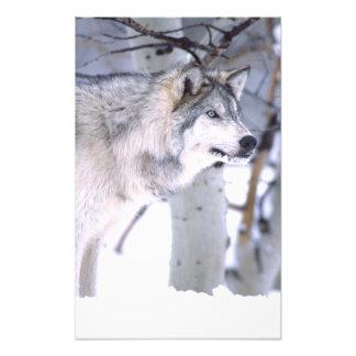 Lupus del lobo, de Canis de madera, película Utah  Impresion Fotografica
