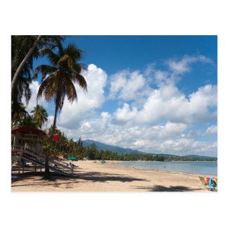 Luquillo Beach Puerto Rico Postcard