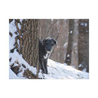 Lurcher Behind A Tree - Canvas