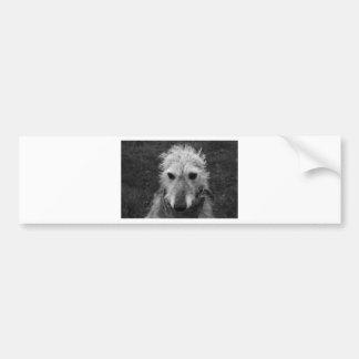 Lurcher Bumper Sticker